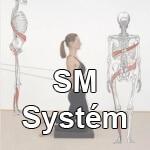 sm system